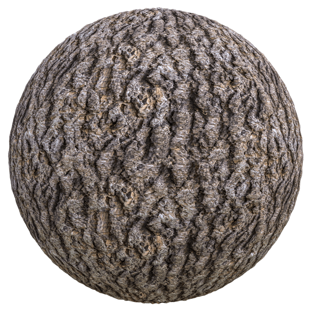 seamless old tree bark texture